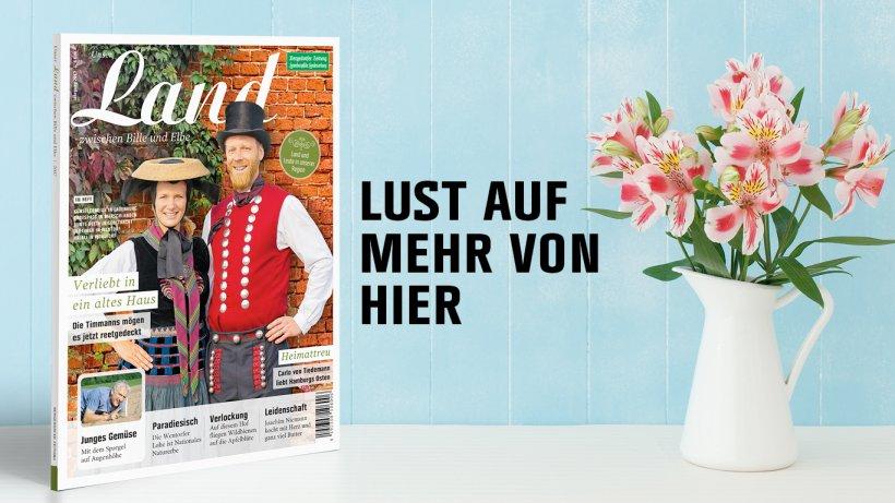 Bergedorfer Zeitung Archiv